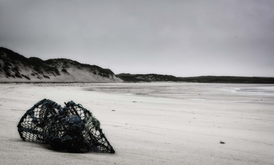 Washed up on Traigh Udal